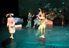 Wonderland Ballet 3