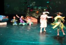 Wonderland Ballet 6