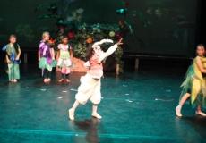 Wonderland Ballet